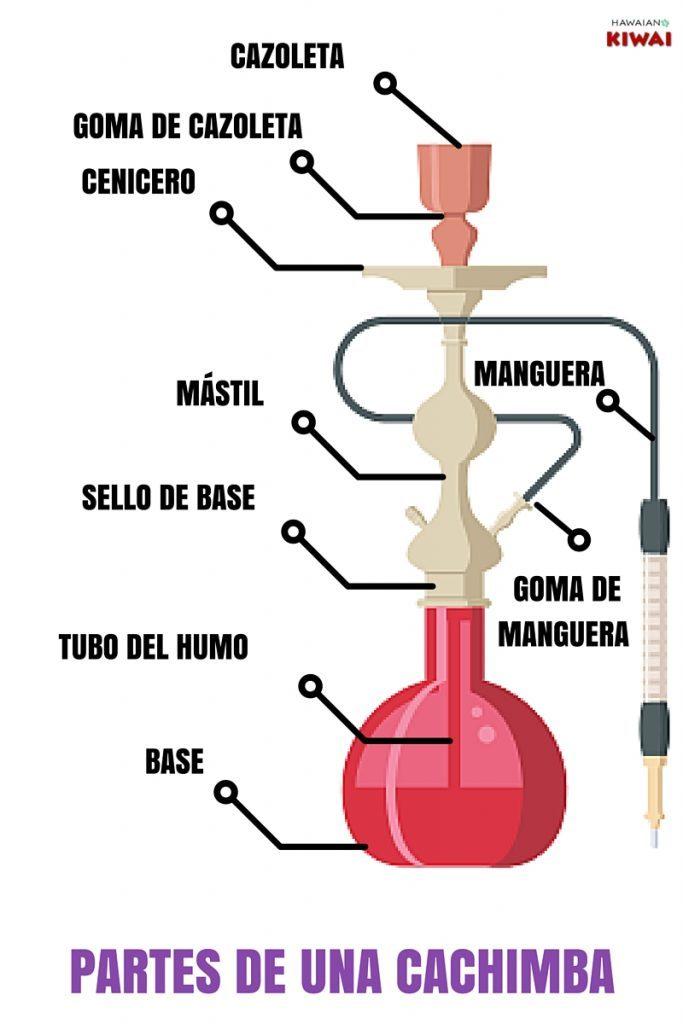 partes de la cachimba o pipa de agua